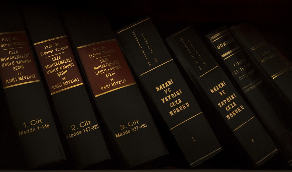 Адвокат по международному праву