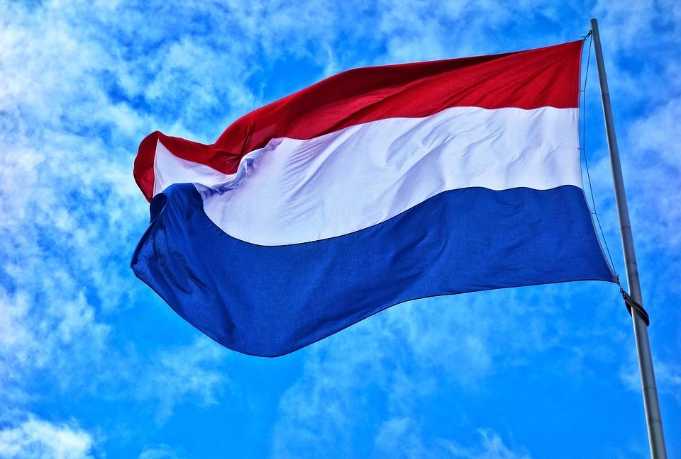 Компания в Нидерландах