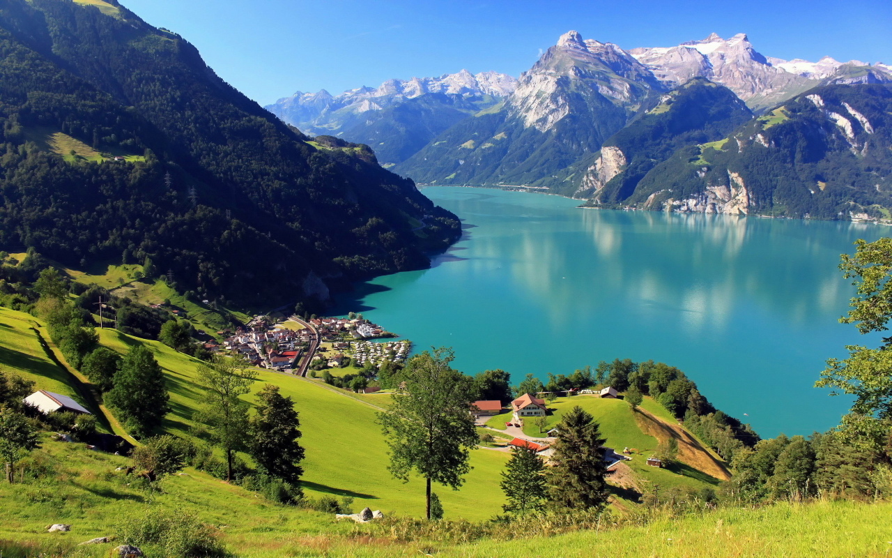 Swiss Asset Management Company for sale