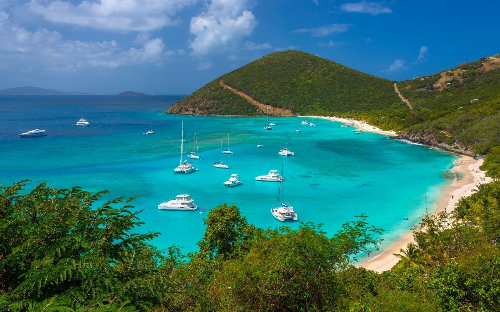 Licence FSC des îles Vierges Britanniques à vendre